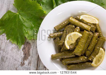 Sarma, stuffed grape leaves in a plate, traditional turkish cuisine.