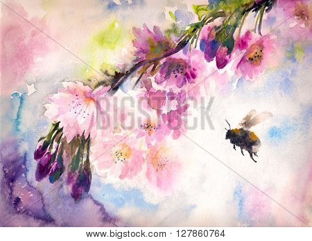 Bumblebee flying to the pink cherry flowers.Picture created with watercolors.