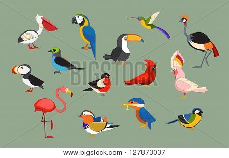 Flat design vector birds icon set. Cartoon bird collection. Popular birding species icons. Exotic bird line art set poster