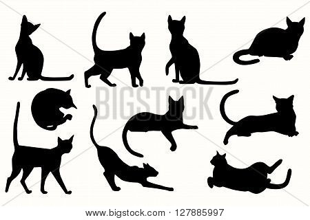 Vector cats silhouette. Cats in various poses.