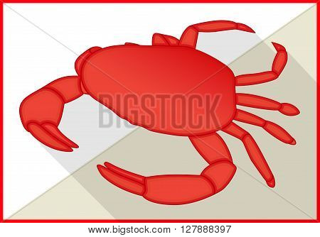 Crab isolated on white background. Crustacean isometric flat vector 3d illustration
