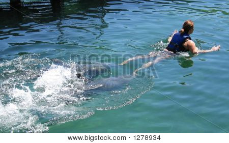 a young lady in a dolphin encounter being pushed by two dolphins poster
