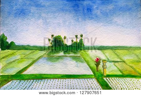 Watercolor hand-painting rice fields, hand-painted etude with water and palm trees, Bali, Indonesia