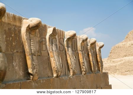 egyptian wall engraved with sculptures of cobra snakes next to Saqqara stepped Pyramid of Djoser from year 2648 Before Christ next to ancient Memphis city in Egypt Africa