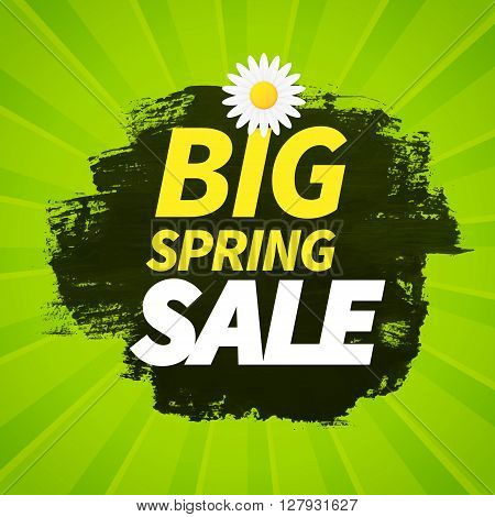 Seasonal big spring sale business advertisement text on painted artistic dry brush and green background with daisy flower. editable. vector.