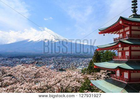 Mt. Fuji viewed from behind Chureito Pagoda or Red Pagoda with sakura in spring.