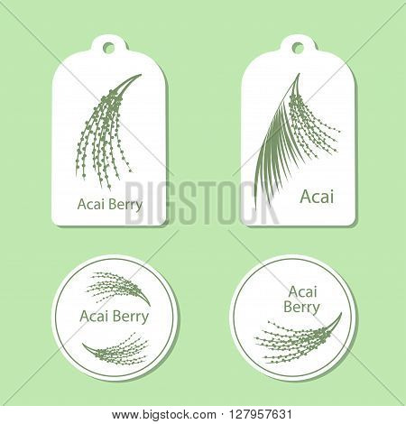 Acai palm leaves and acai berries vector illustration isolated on white background. Superfood acai green silhouette berry. Tags and Labels