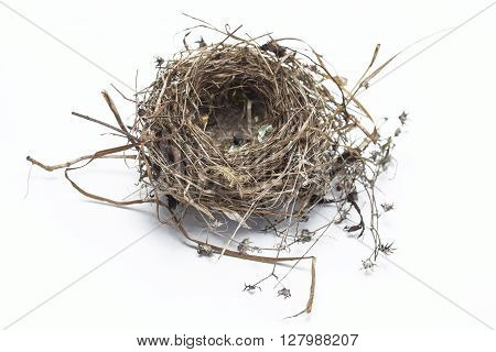 Real bird nest isolated on white background
