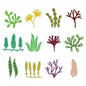 Seaweed icons set - nature, food trends concept poster