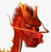 red chinese dragon on a white background poster