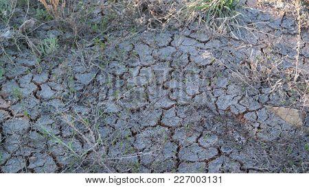 Cracked and barren ground.Kazakhstan desert