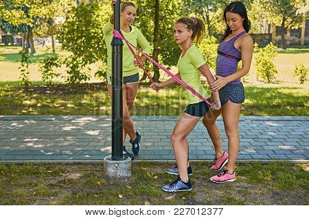 Sporty Brunette Female Teaching Blonde Girl How To Do Workouts With Trx Straps.