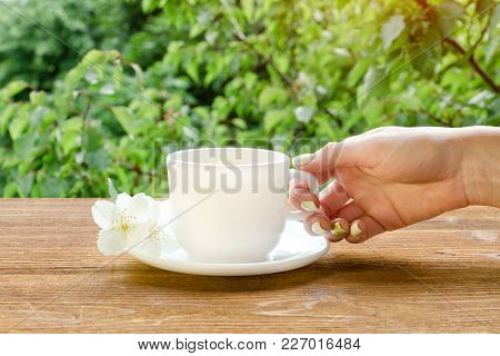 Female Hand With White Mug Of Tea And Jasmine On A Wooden Table. Close Up