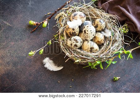 Easter Eggs In Bird Nest On Rustic Metal Background. Quail Easter Eggs With Spring Green Leaves And