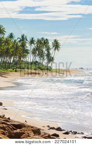Sri Lanka, Asia, Rathgama - Peaceful Natural Beach Landscape Of Rajgama Aka Rathgama