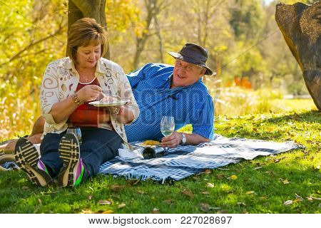 Johannesburg, South Africa, 05/10/2014,  Middle Aged Couple Sitting On A Picnic Blanket Under A Tree