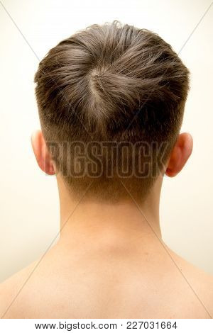 Back Of A Teenage Boy's Head