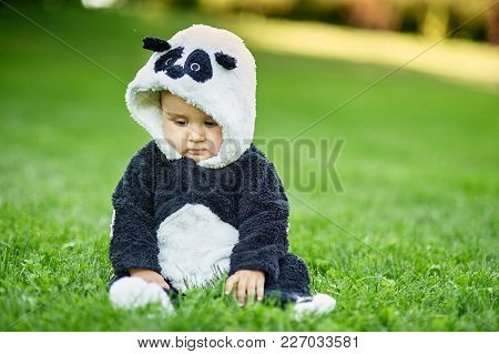 Cute Baby Boy Wearing A Panda Bear Suit Sitting In Grass At Park.