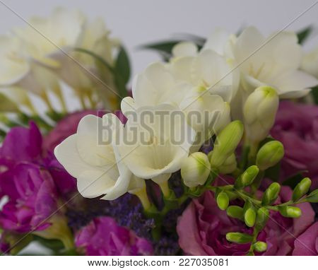 Spring Flower Background Pink Rose And White Freesia Flower Bouquet With Green Leaves, Decorative Fl
