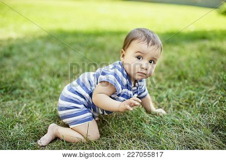 Child Crawling On The Grass