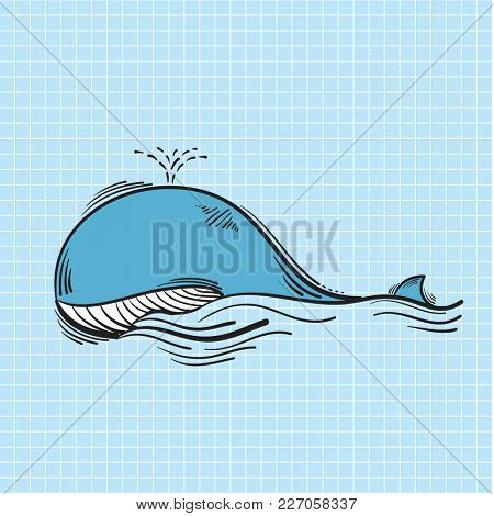 Illustration of blue whale swimming