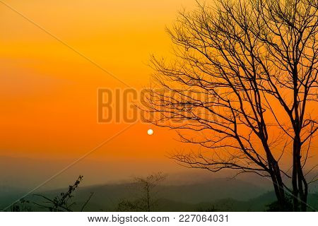 Wallpaper Background Garden Park Outdoor Sunsets Mountains. Phurue Thailand Tropical Forests