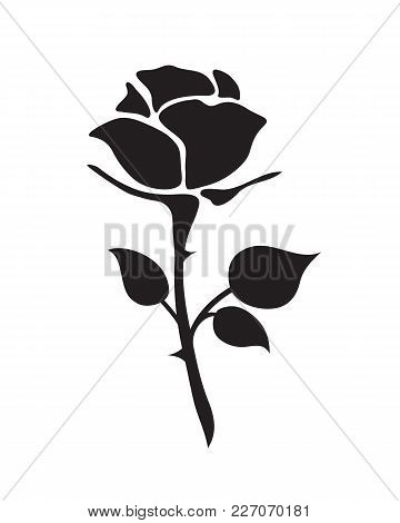 Simple Flat Black Rose Vector Hand Drawn Romance Flower Icon Illlustration Vintage Style Isolated On