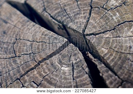 Weathered Torn Wooden Block In Cold Light Mood - Atmospheric Sensitive Texture