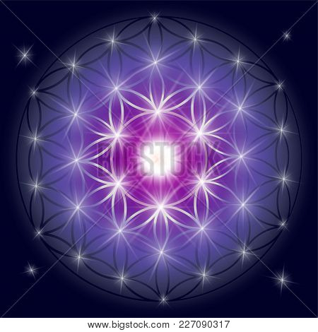 Sacred Geometry Illustration: Flower Of Life, Also Known As Seed Of Life Or The Pattern Of Creation.
