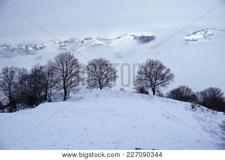 Rest On The Winter Nature. Beautiful Winter Nature Landscape. Beautiful Winter Nature. Snow-covered
