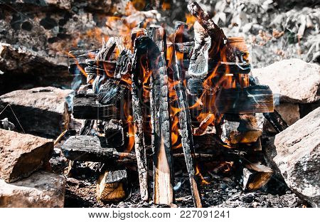 A Bonfire Close-up. A Fire Burnes At The Summer Daytime. Logs Are Almost Black And The Fire Is Brigh