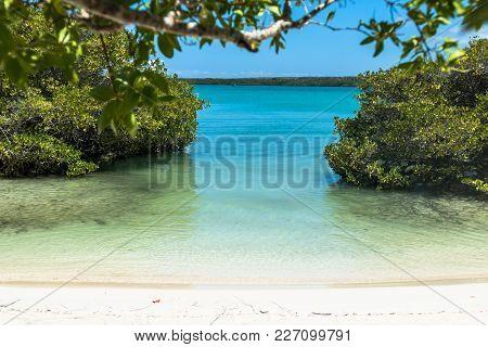 View Of The Galapagos Beach At Tortuga Bay