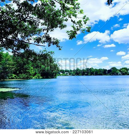 Crystal Clear Water, With Blue Skies And A Beautiful Green Branch Coming From The Top.