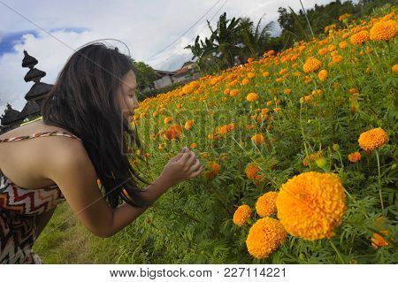 Young Asian Chinese Tourist Woman Enjoying Relaxed The View And Perfume Smell Of A Beautiful Flowers