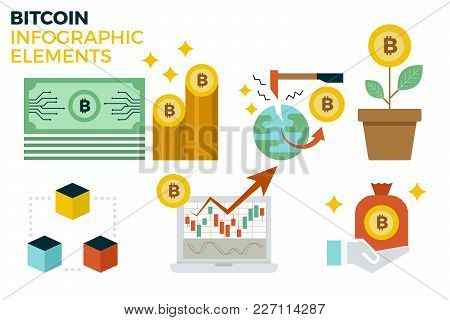 Bitcoin Infographic Elements