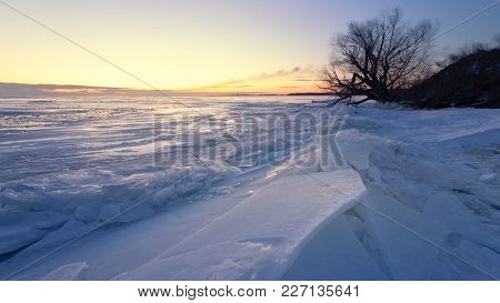 Dawn At The Frozen Lake Shore / Lonely Tree In The Rays Of Dawn