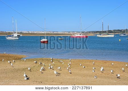 Alvor, Portugal - June 7, 2017 - Yachts Moored In The Estuary With Gulls On The Shoreline In The For
