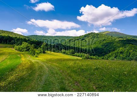 Grassy Rural Fields On Mountain Slopes. Country Road Runs Uphill In To The Forest. Beautiful Landsca