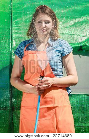 Gardening. Woman In Orange Apron Holds The Sprinkler Hose For Irrigation Plants Watering The Garden