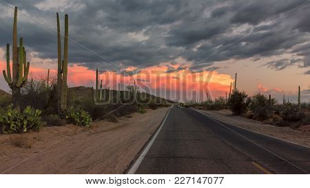 The Magical Landscape In Saguaro National Park, Panoramic Road At Sunset, Tucson, Arizona.