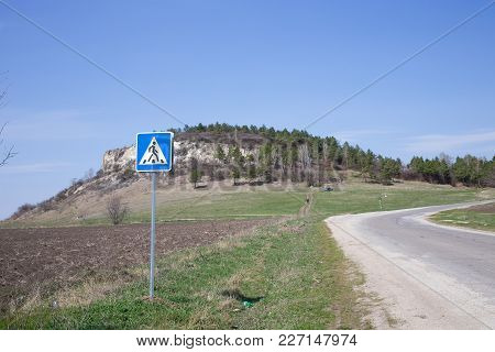 Asphalt Road Near The Coniferous Forest With Blue Sky As A Background.