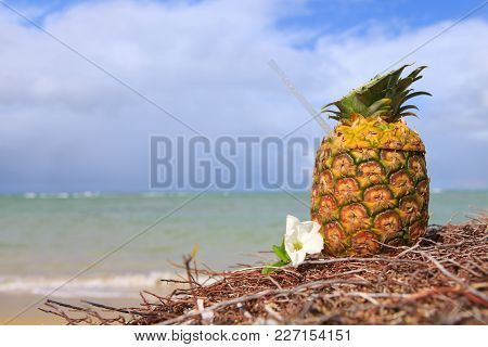 Pina Colada In Pineapple In The Sand Of The Beach With The Beautiful Caribbean Sea In The Background