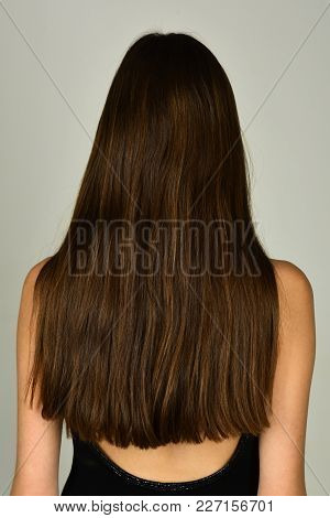 Woman With Long Brunette Hair, Back View. Girl With Healthy Hair, Hairstyle. Beauty Salon Concept. H