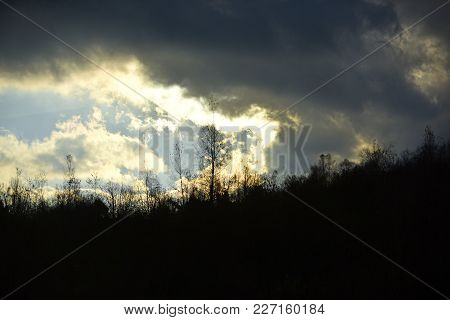 Silhouettes Of Black Trees Without Leaves. Autumn Landscape Concept. Sun Makes Its Way Through Menac