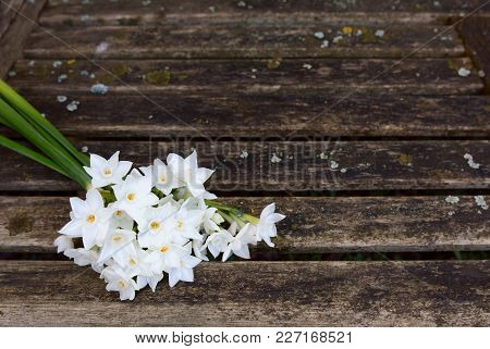 Bunch Of White Narcissi Flowers On A Rustic Bench