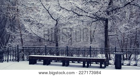 A Snowy Day. Empty Bench In The Park. Winter Scene. Aged Photo. Snow Covered Trees In The Woods. Win