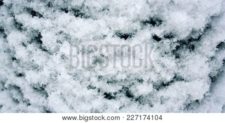 Tree Trunk Covered With Snow. Fluffy Snowflakes On The Roof. Natural Background. Cold Winter Day. Cl