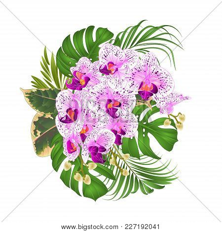Bouquet With Tropical Flowers  Floral Arrangement, With Beautiful Purple And White Orchid, Palm,phil