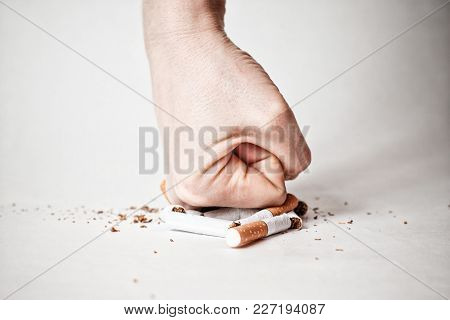 Male Hand Destroying Cigarettes - Stop Smoking Concept - World No Tobacco Day