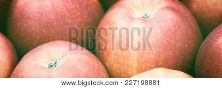Web Banner Red Fresh Group Apples Background